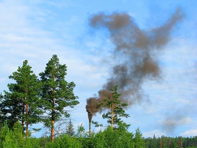 Fumée polluante devant arbres verts