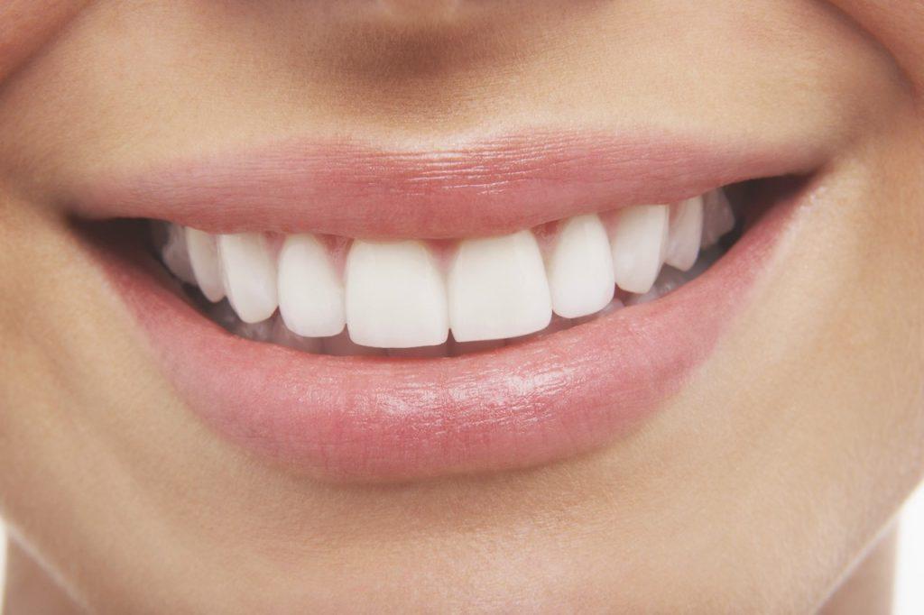 Une nouvelle dentition